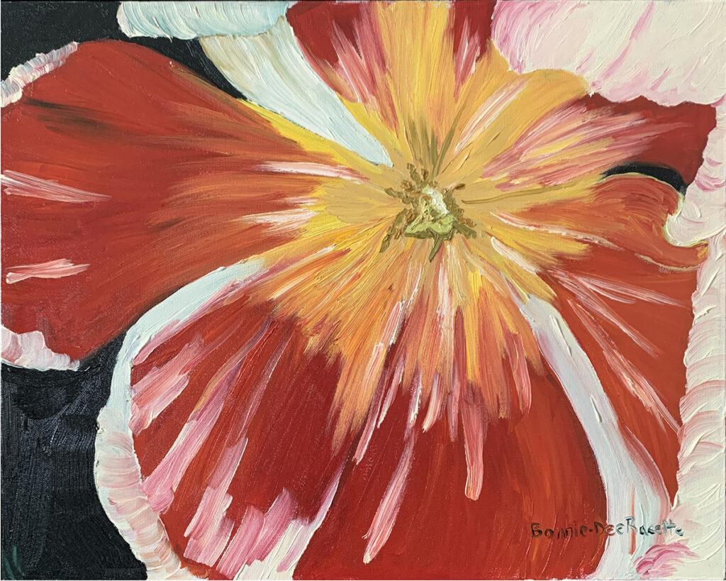 Red White Tulip