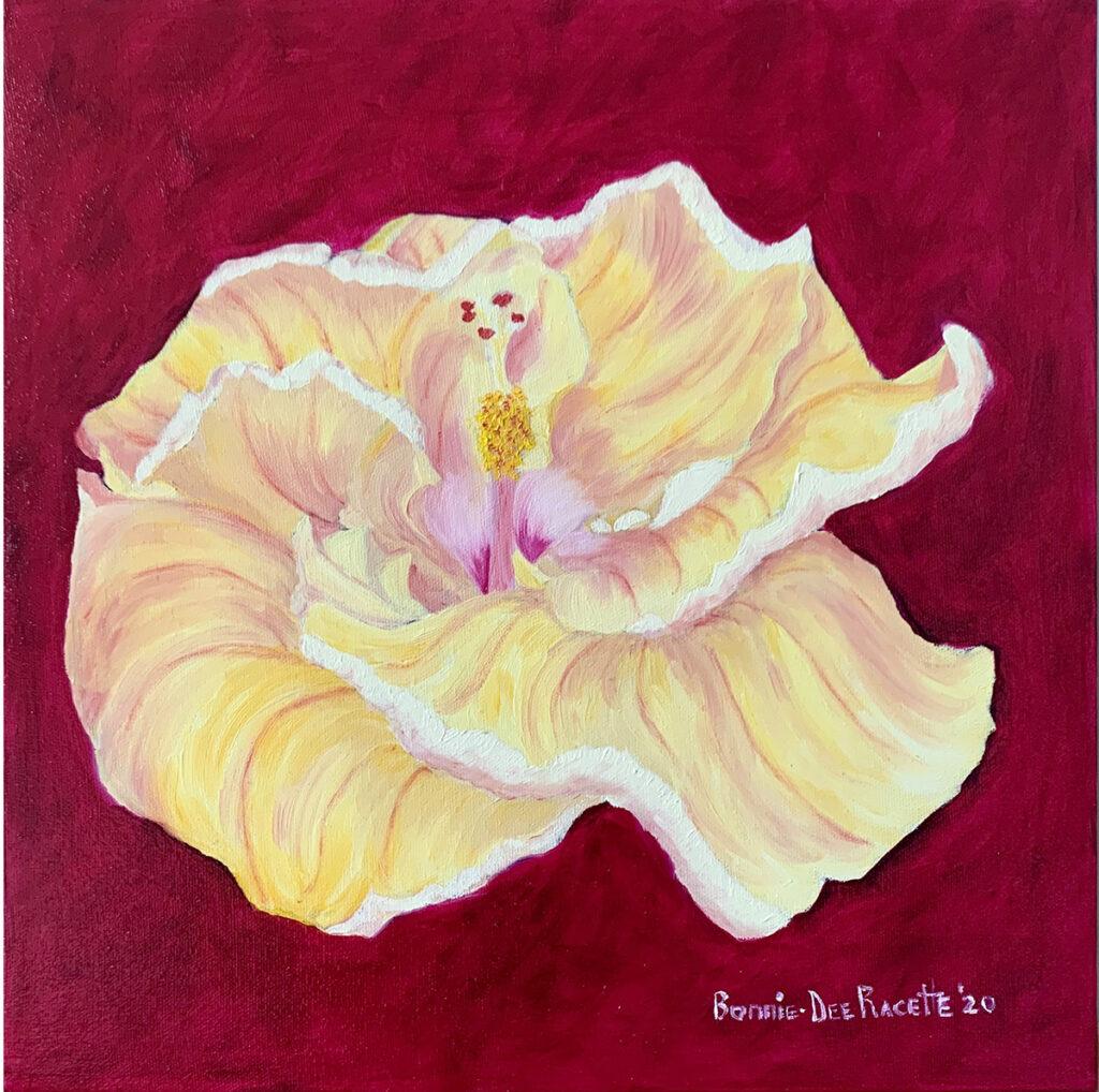 Yellow Sun Sand Hibiscus